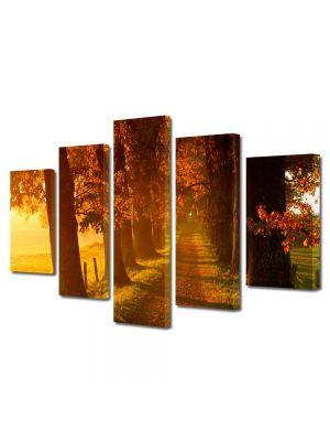 Set Tablouri Multicanvas 5 Piese Peisaj Carare