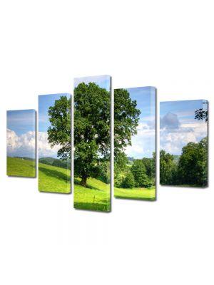 Set Tablouri Multicanvas 5 Piese Peisaj Copac masiv