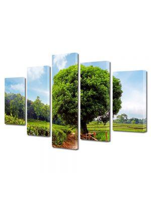 Set Tablouri Multicanvas 5 Piese Peisaj Coroana perfecta