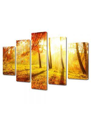 Set Tablouri Multicanvas 5 Piese Peisaj Portocaliu aprins