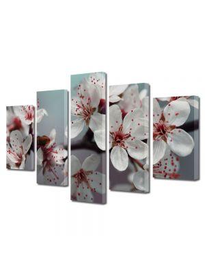 Set Tablouri Multicanvas 5 Piese Peisaj Flori albe