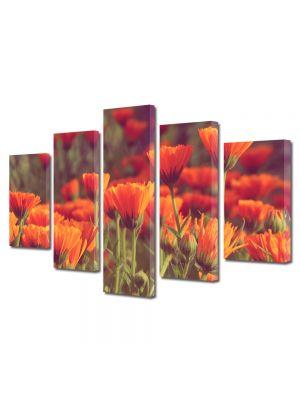 Set Tablouri Multicanvas 5 Piese Peisaj Flori rosii