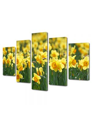 Set Tablouri Multicanvas 5 Piese Peisaj Floricele galbene
