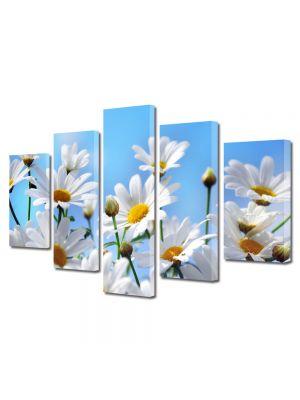 Set Tablouri Multicanvas 5 Piese Peisaj Flori albe pe cer