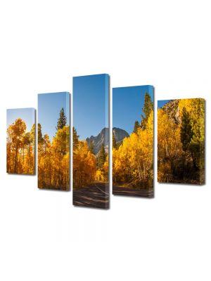 Set Tablouri Multicanvas 5 Piese Peisaj Prin Canada