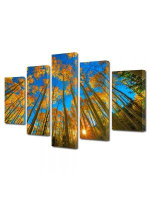 Set Tablouri Multicanvas 5 Piese Peisaj In sus pe cer