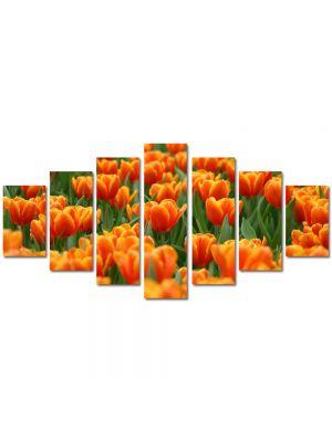 Set Tablouri Multicanvas 7 Piese Peisaj Mare de lalele portocalii
