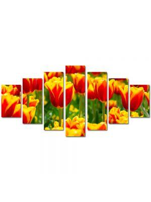 Set Tablouri Multicanvas 7 Piese Peisaj Lalele in 2 culori