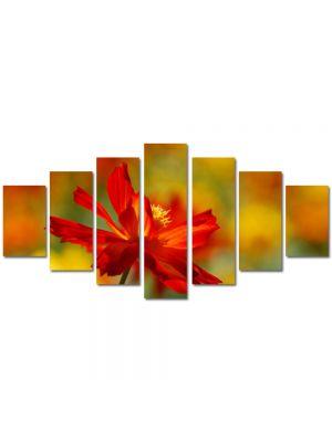 Set Tablouri Multicanvas 7 Piese Peisaj Floare singuratica
