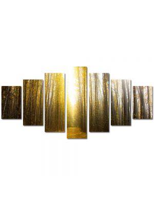 Set Tablouri Multicanvas 7 Piese Peisaj Lumina puternica