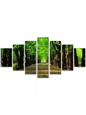 Set Tablouri Multicanvas 7 Piese Peisaj Poteca in parc