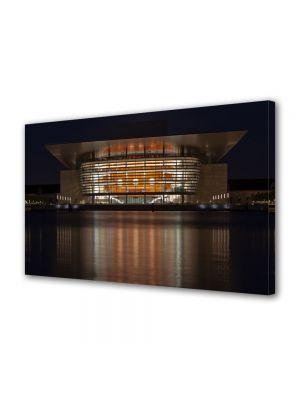Tablou VarioView MoonLight Fosforescent Luminos in Urban Orase Casa operei in Copenhaga
