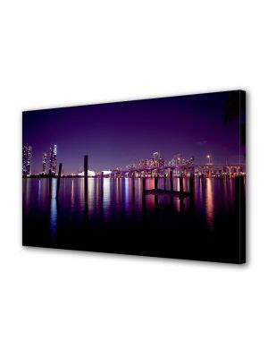 Tablou VarioView MoonLight Fosforescent Luminos in Urban Orase Miami USA