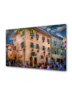 Tablou VarioView MoonLight Fosforescent Luminos in Urban Orase Casa Dracula Sighisoara