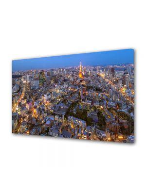 Tablou VarioView MoonLight Fosforescent Luminos in Urban Orase Tokyo la apus