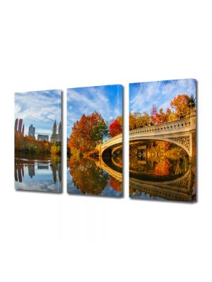Set Tablouri Multicanvas 3 Piese Parcul Central in New York