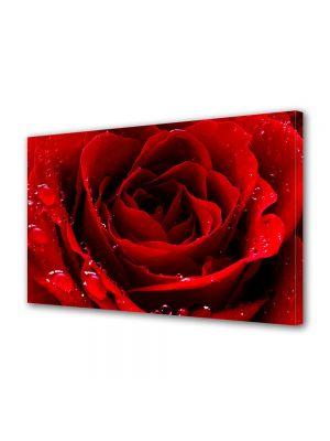 Tablou Canvas Valentine's Day Ziua indragostitilor Fir de trandafir