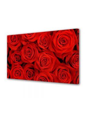 Tablou Canvas Valentine's Day Ziua indragostitilor Fire rosii de trandafir