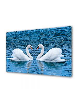 Tablou Canvas Valentine's Day Ziua indragostitilor Lebede albe