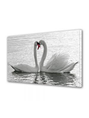 Tablou Canvas Valentine's Day Ziua indragostitilor Lebede de ziua indragostitilor