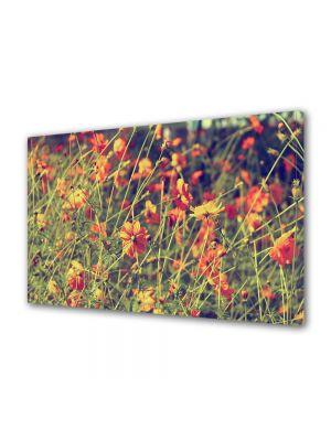 Tablou Canvas Vintage Aspect Retro Flori salbatice