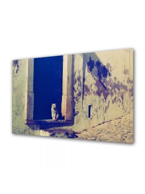 Tablou Canvas Luminos in intuneric VarioView LED Vintage Aspect Retro Pisica somnoroasa