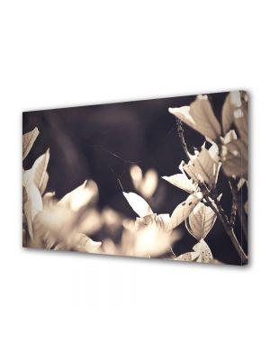 Tablou Canvas Luminos in intuneric VarioView LED Vintage Aspect Retro Frunze de toamna in sepia