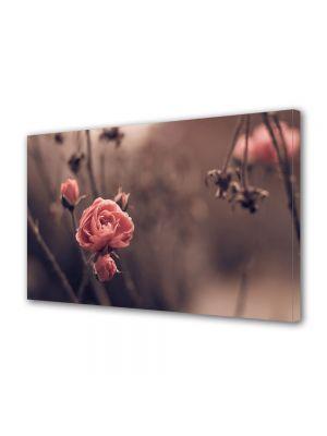 Tablou Canvas Vintage Aspect Retro Trandafiri de toamna