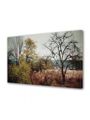 Tablou Canvas Vintage Aspect Retro Peisaj cu salcami