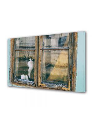 Tablou Canvas Luminos in intuneric VarioView LED Vintage Aspect Retro Pisica la geam