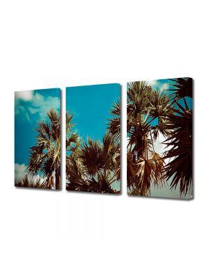 Set Tablouri Muilticanvas 3 Piese Vintage Aspect Retro Coroane de palmieri