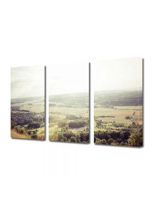 Set Tablouri Muilticanvas 3 Piese Vintage Aspect Retro Peisaj de campie